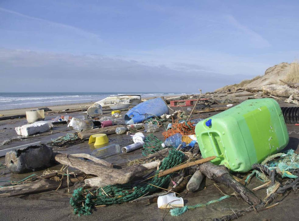 An estimated eight million tonnes of plastic pollution enters the sea each year
