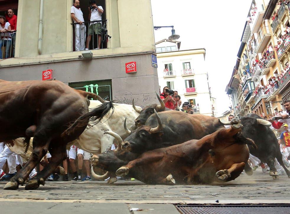 """A Del Tajo la Reina's bull falls during the second """"encierro"""" (bull-run) of the San Fermin Festival in Pamplona"""