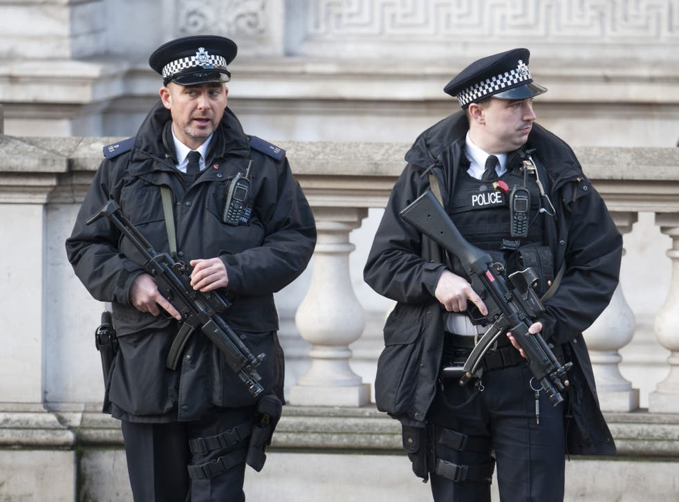 Armed police patrol at the Remembrance Sunday events in London in 2014
