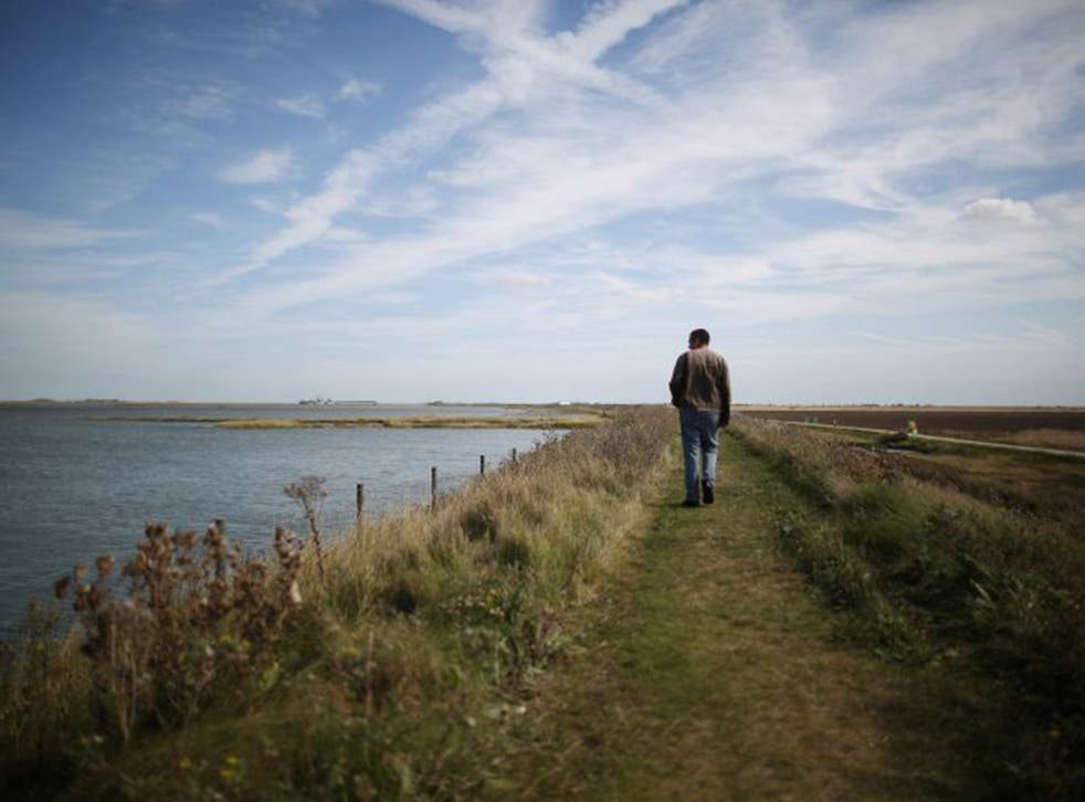 Wallasea Island has been transformed from farmland into a thriving wetland twice the size of the City of London