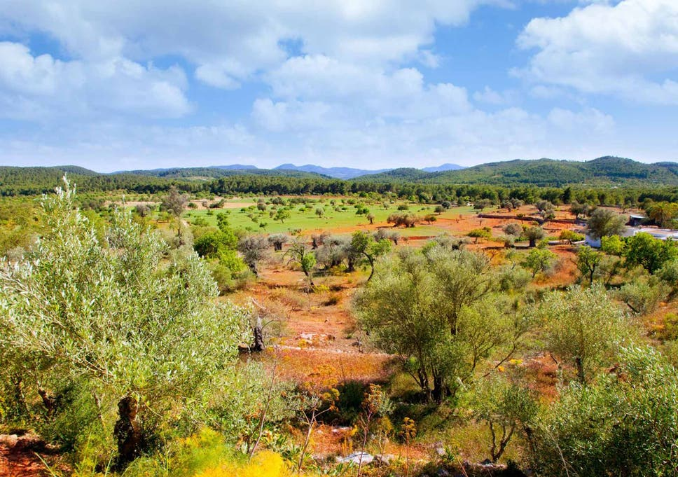 Ibiza walking holiday: From Siesta to perfect solitude | The