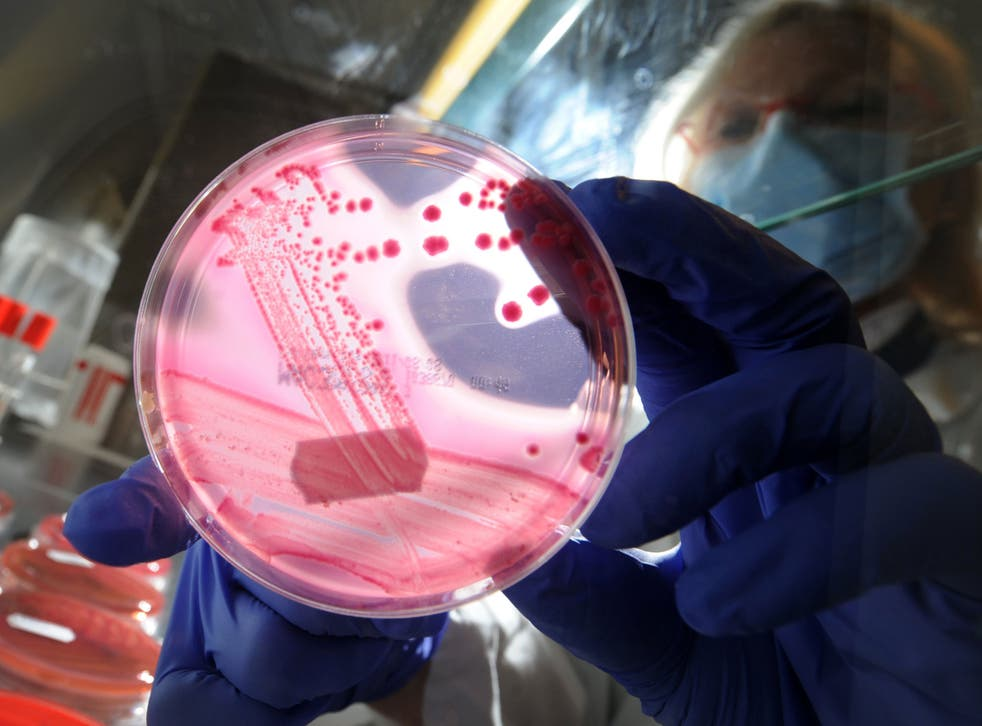 The new strain has contributed to a rise in infections in the UK