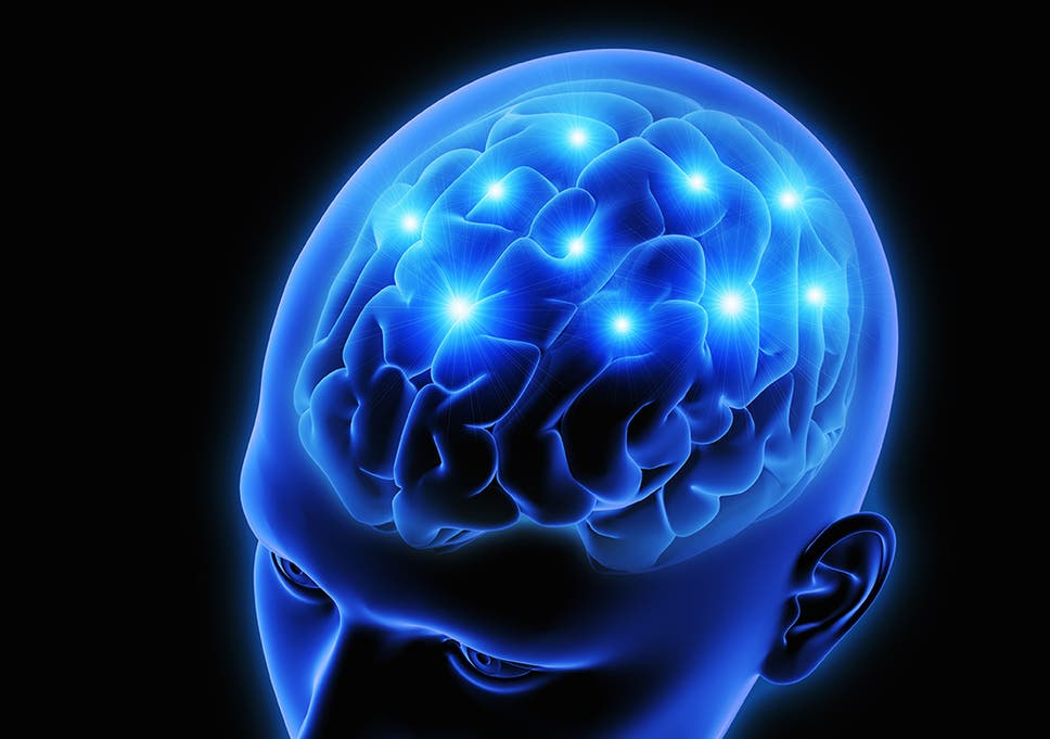 Depression can damage parts of the brain research shows the depression can damage parts of the brain research shows ccuart Image collections