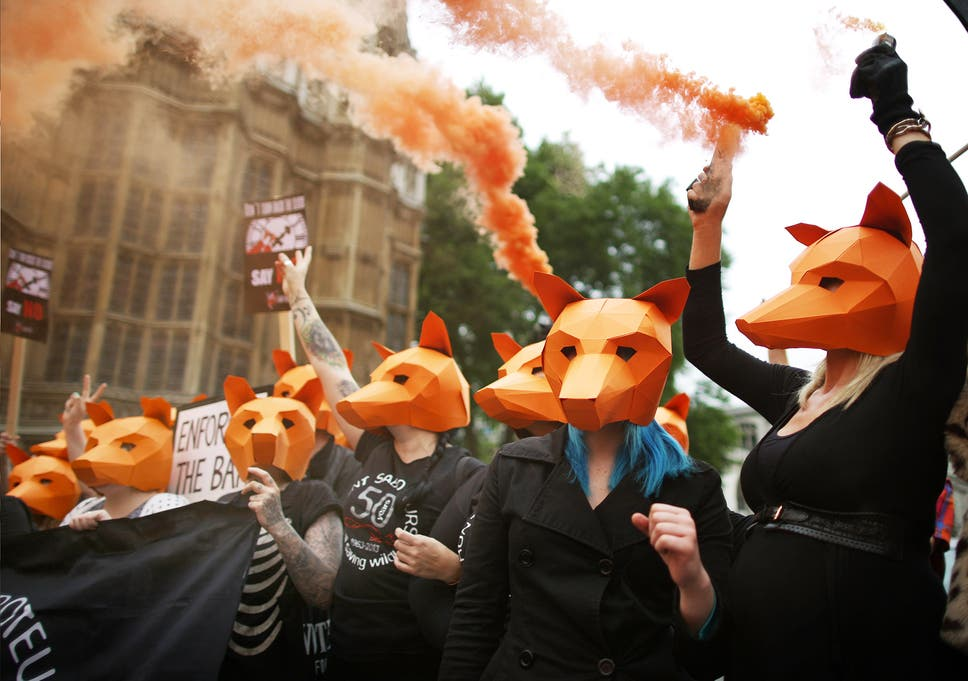 Steve Wintercrofts Fox Masks Stole The Show At This Weeks Anti Hunting Demonstrations