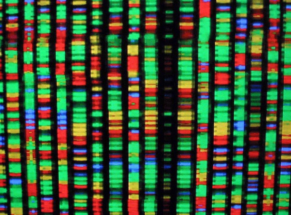 A digital representation of the human genome