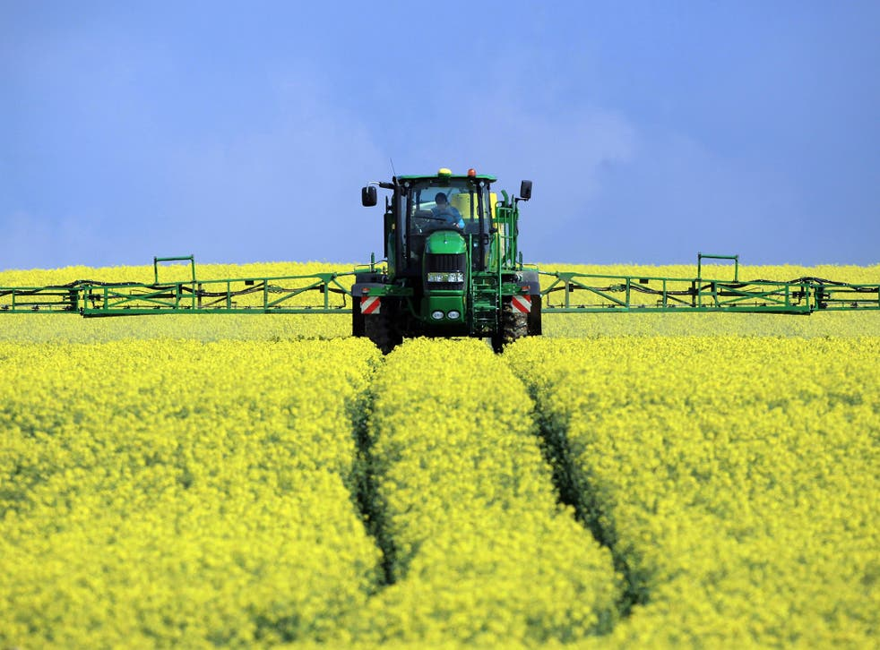 A field is sprayed with pesticide
