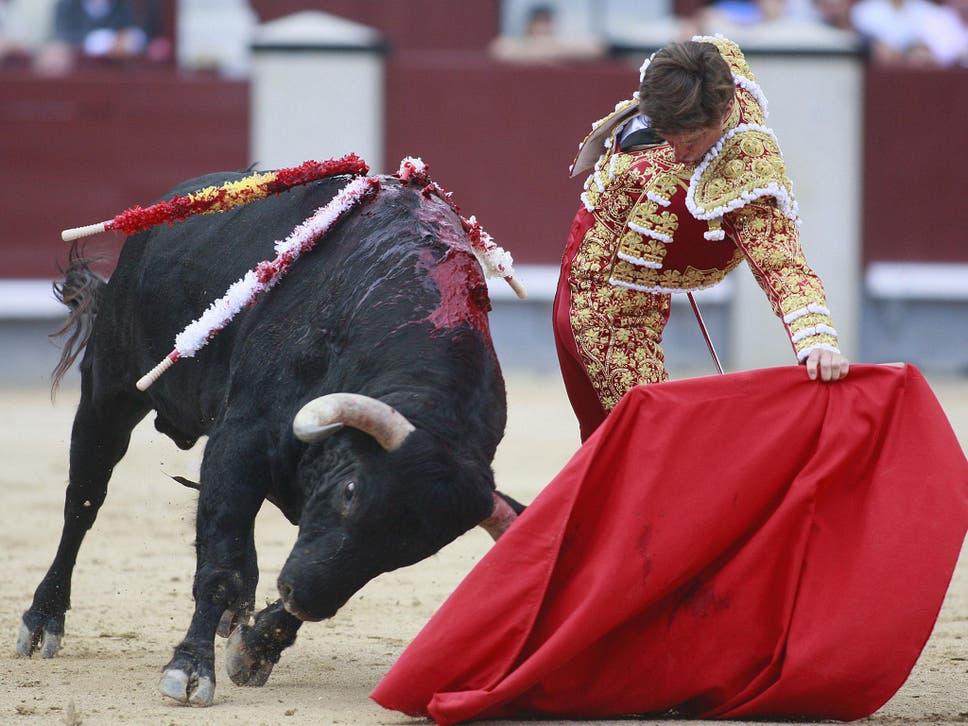 Sex bullfight