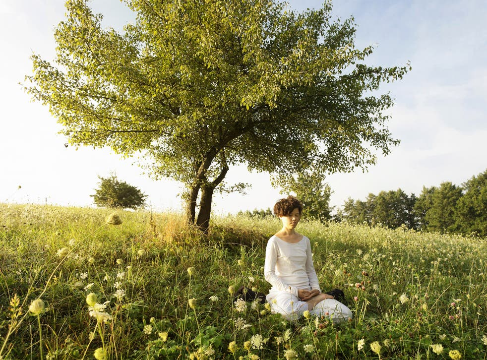 How an intensive ten-day meditation retreat could transform your life for  the better   The Independent   The Independent