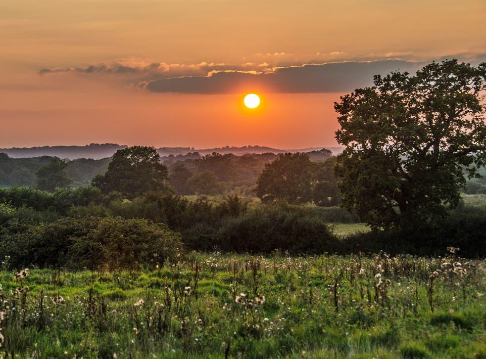 Wild world: the sun sets on New Barn Farm