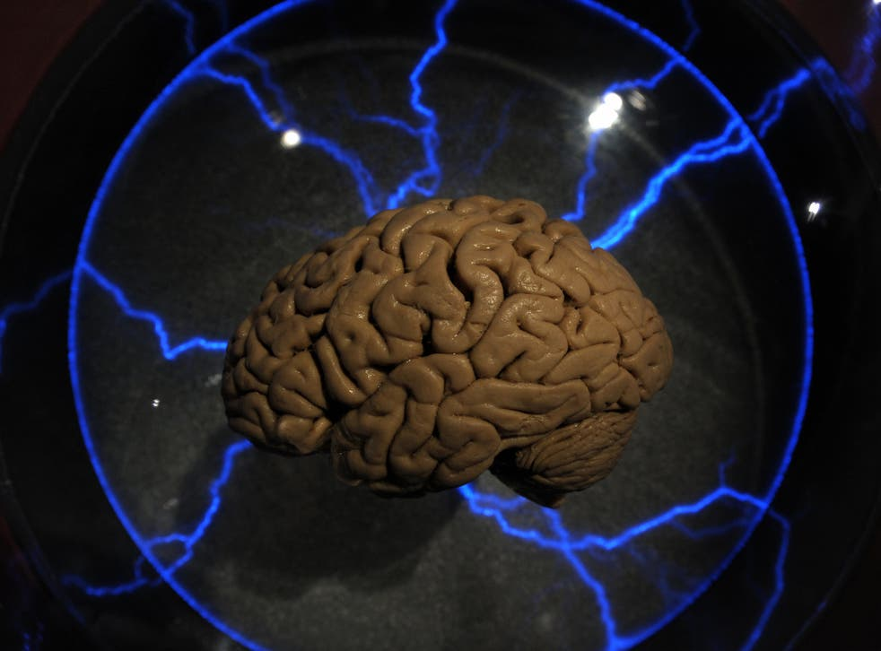 Scientists think it could help understand Alzheimers and Parkinsons disease