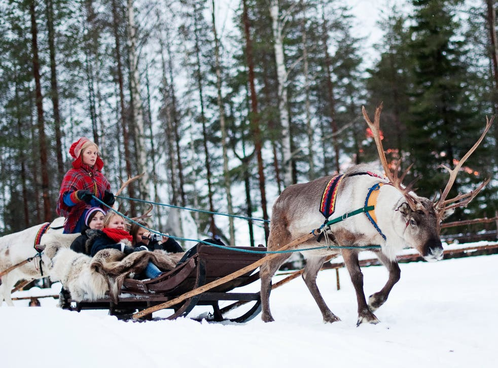 Tourists take a reindeer-driven sleigh ride in Lapland
