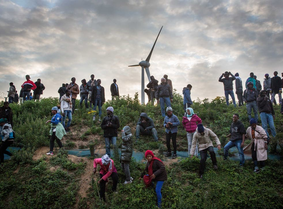 Migrants walk down a slope beside a road leading to the Eurotunnel terminal in Coquelles on July 30, 2015