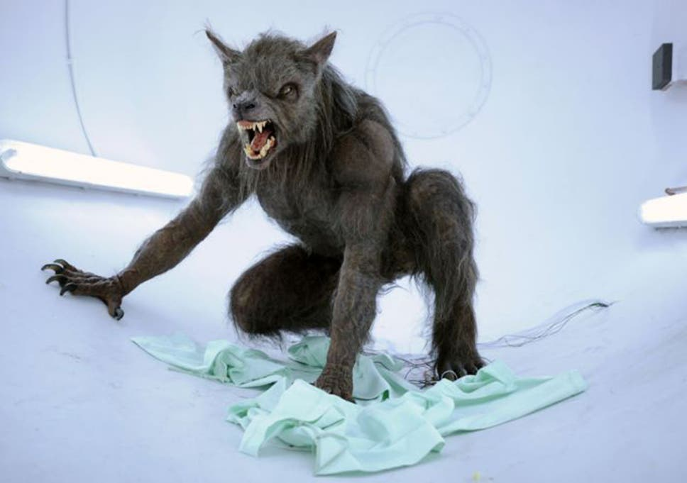 werewolf conference will see academics shine a light on folkloric
