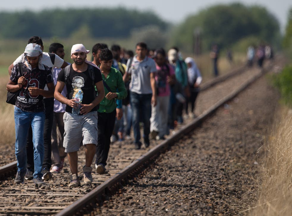 Migrants who have just crossed the border from Serbia into Hungary walk along a railway track that joins the two countries