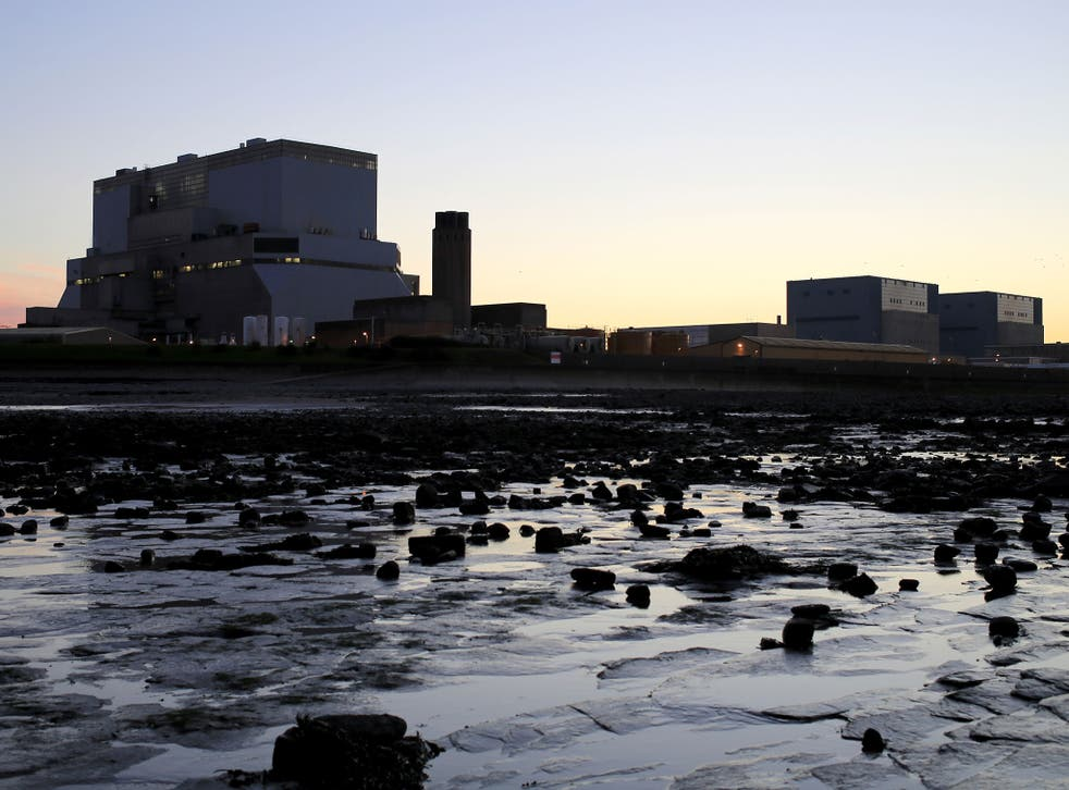 <p>The powerstation site is on a vital migratory route for many fish species</p>