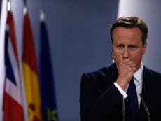 Downing Street silent on pig and genitals claims