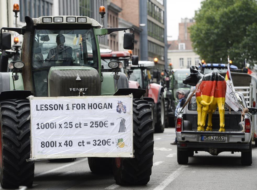 Farmers blockaded the streets in front and around the European Union headquarters in Brussels (Rex)