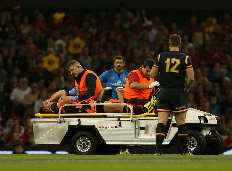 Rhys Webb has been ruled out of the Rugby World Cup