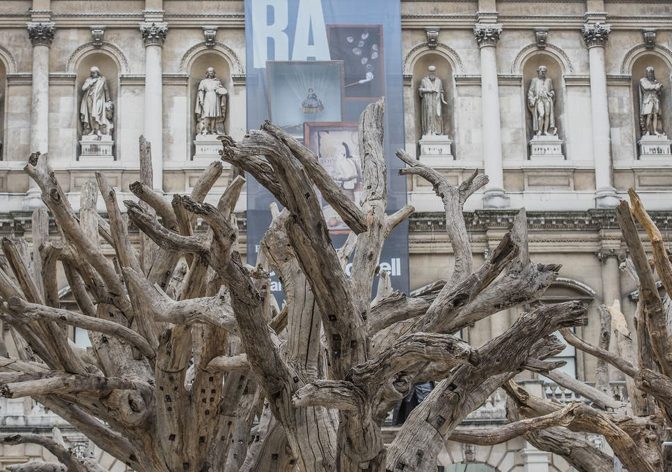 Ai Weiwei Royal Academy Review A Coherent And Beautifully