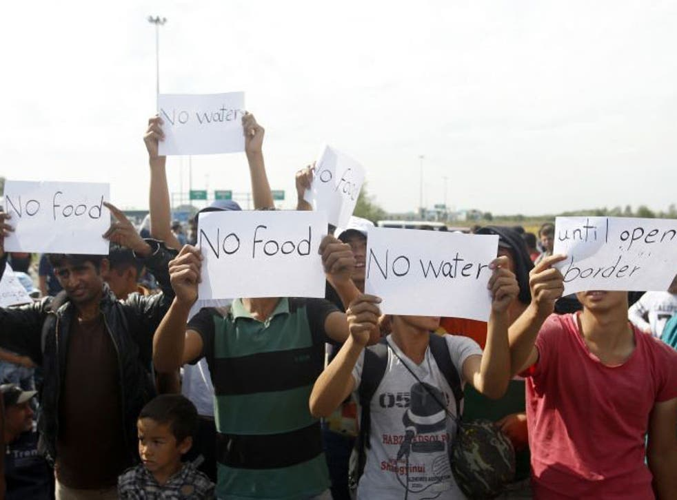 Refugees say they will not eat or drink until Hungary re-opens its border