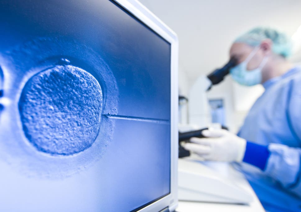 IVF embryos to be genetically manipulated as scientists