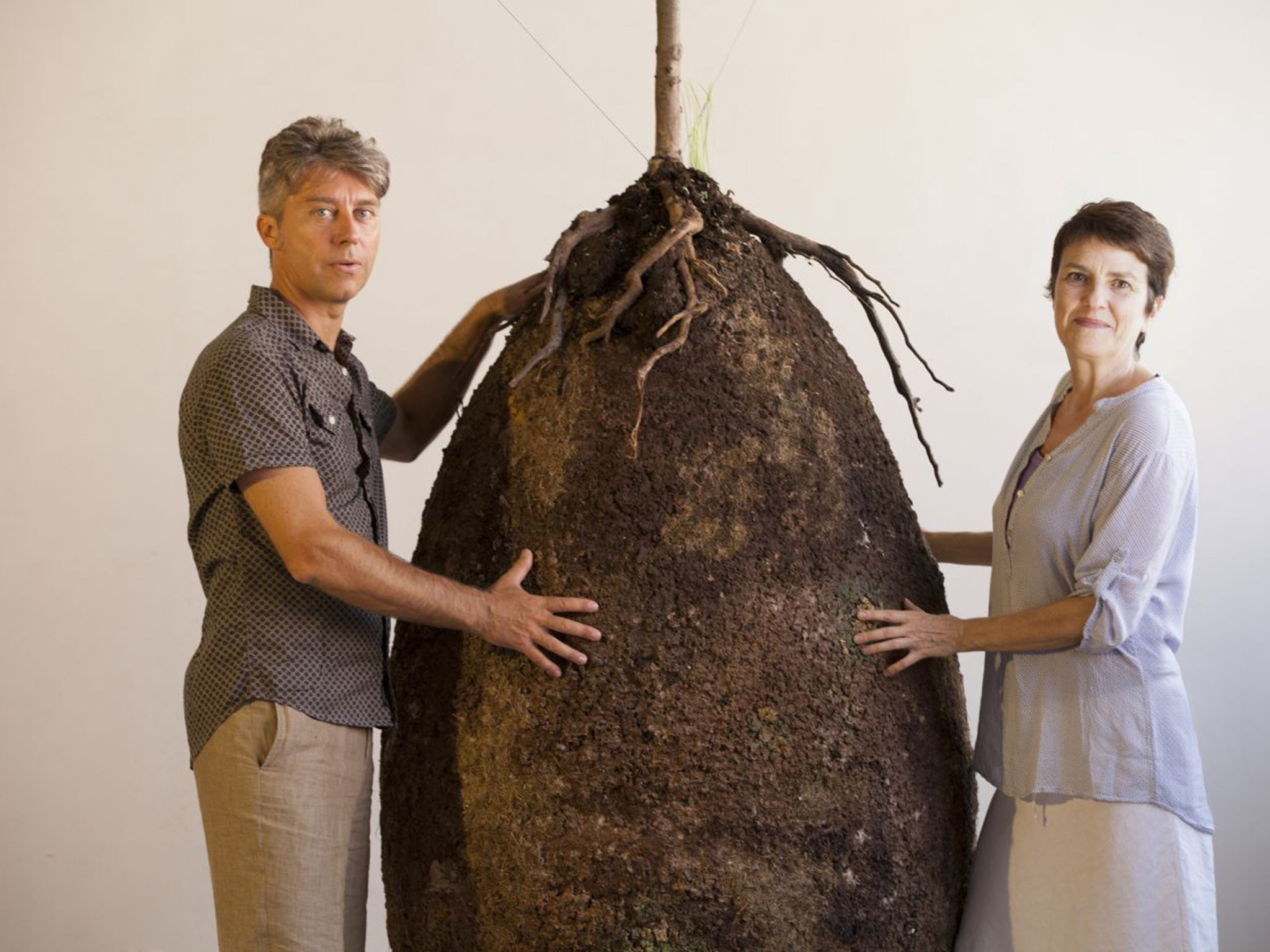 Green Burials Plans For New Biodegradable Human Seed Pods To - Capsula mundi burial pods