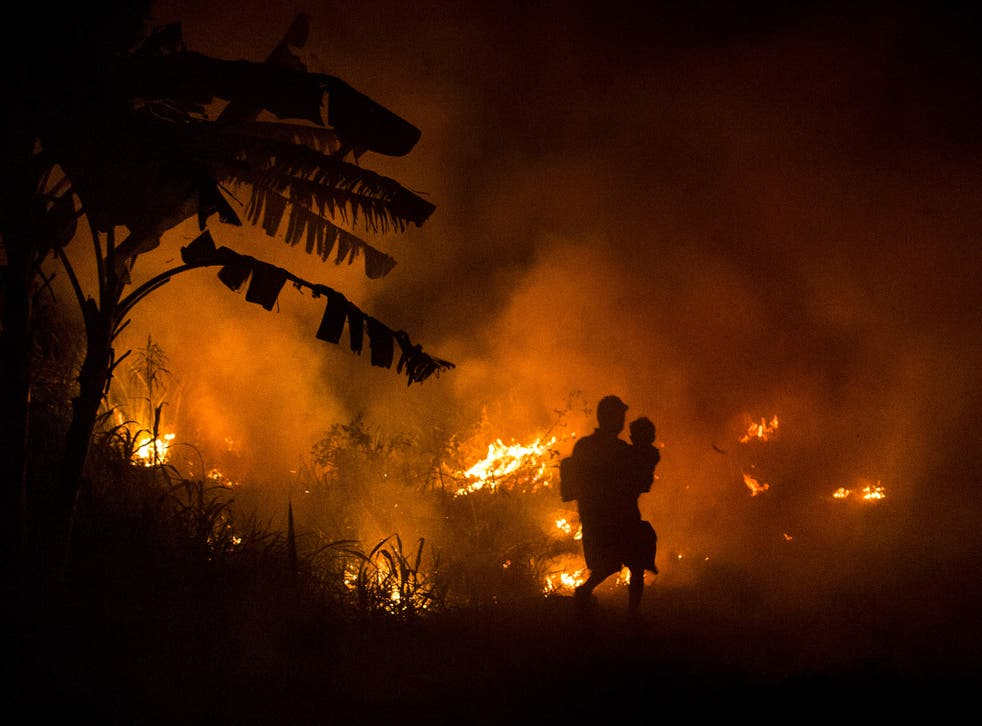 A forest fire in South Sumatra