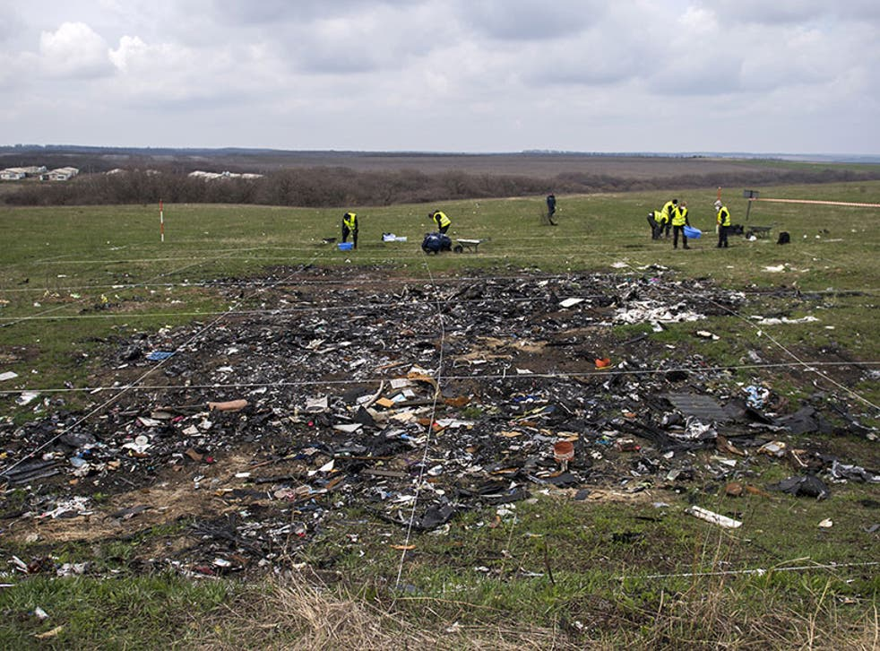 The MH17 plane crash site in Donetsk