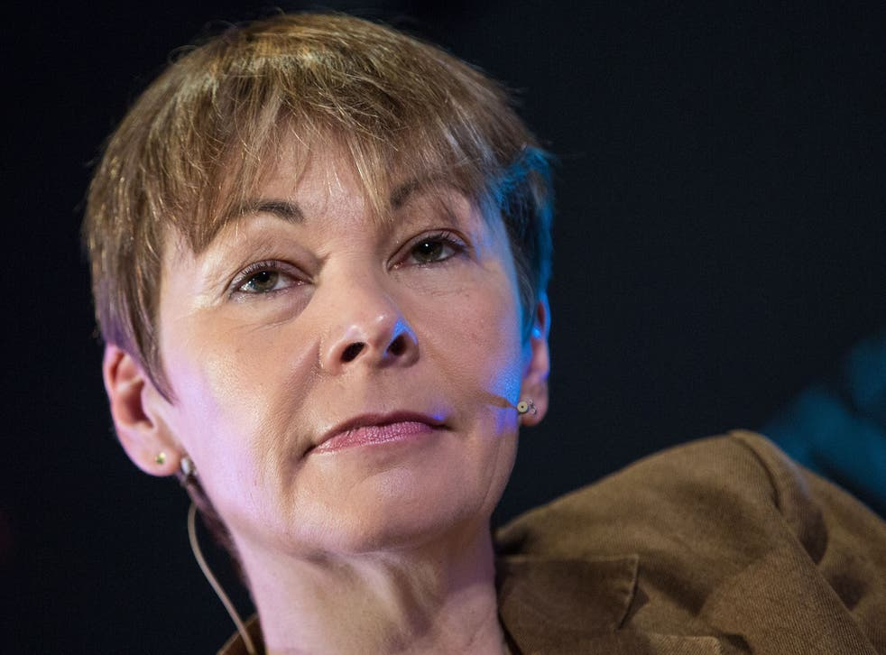 Caroline Lucas is the Green Party's sole MP, for Brighton Pavilion (