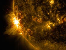 Evidence of 'enormous' solar storm suggests devastating event could