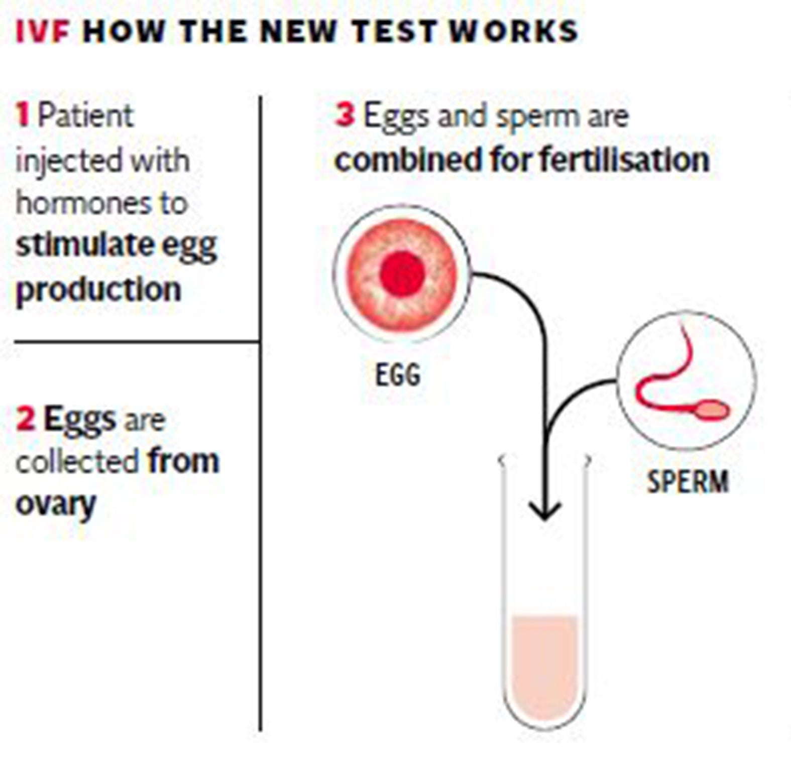 IVF test could more than double success rate to over 80 per cent