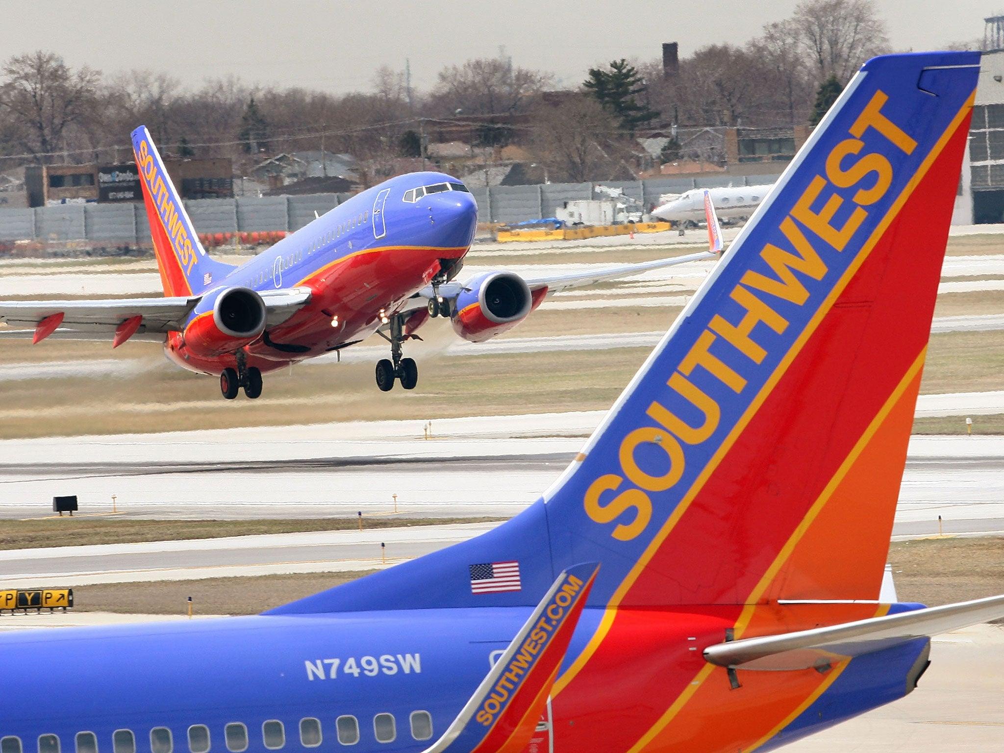 Emotional support dog bites child's face on Southwest Airlines flight