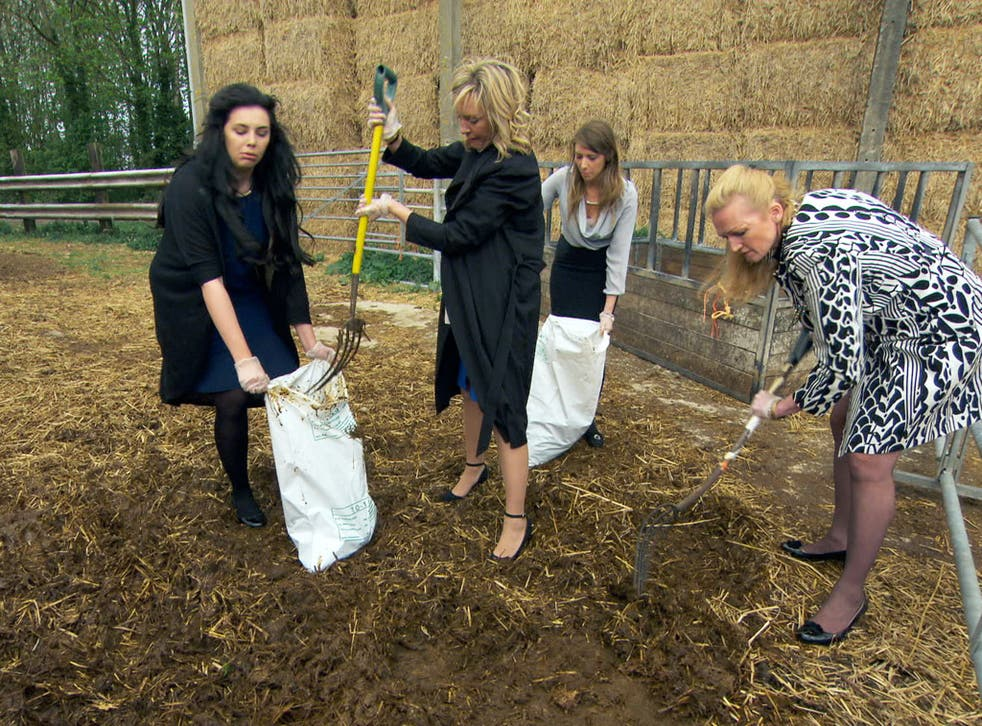 Raking it in: the girls' team gets mucky in The Apprentice