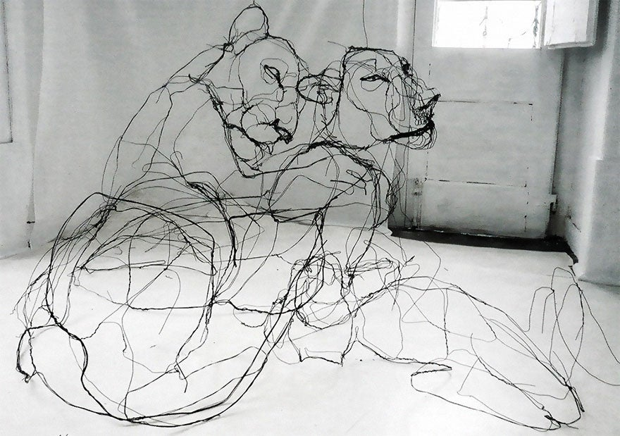 The Line Artist : Portuguese artist makes wire animal sculptures that look just like