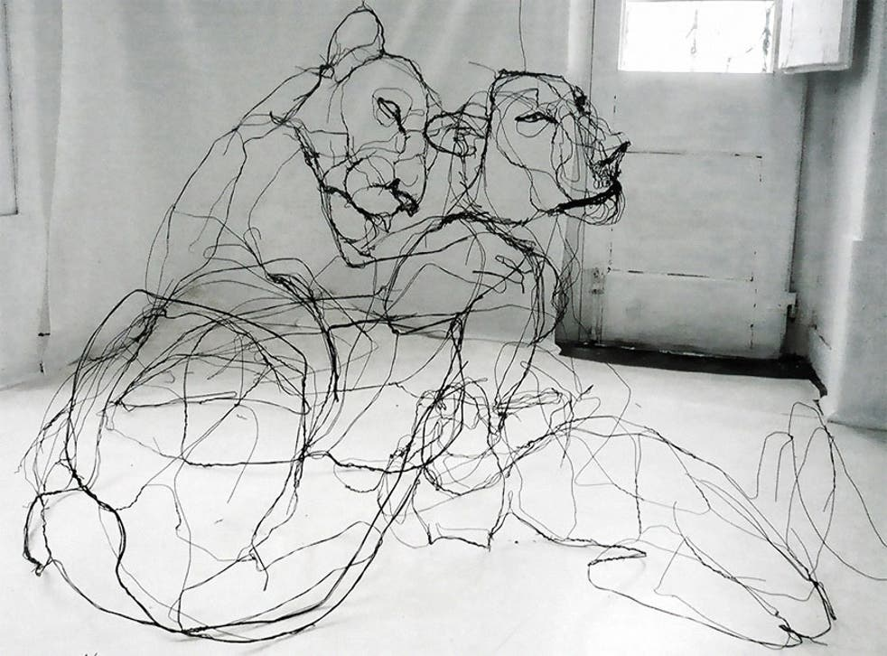 David Oliveira is primarily inspired by drawings