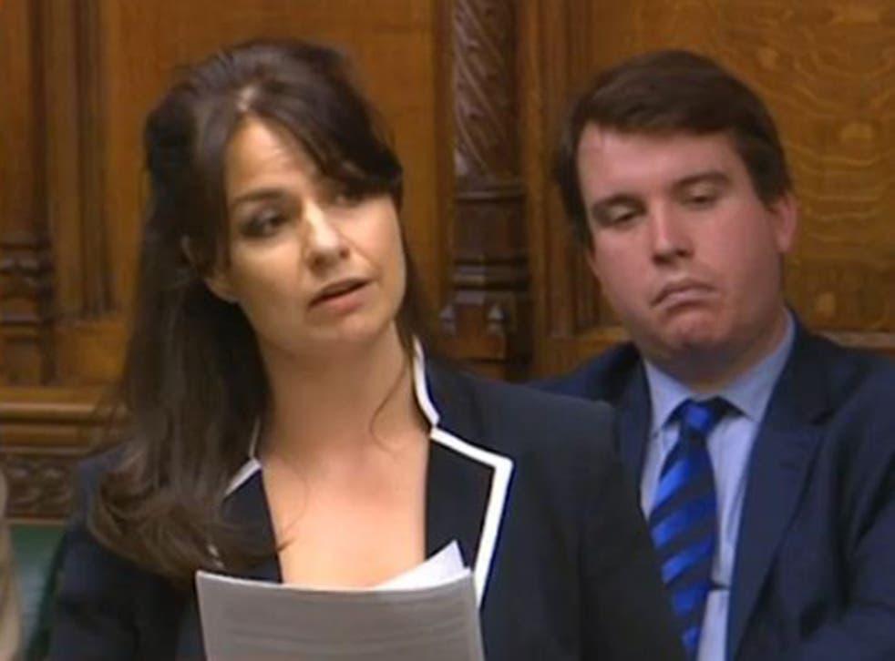Heidi Allen delivers her maiden speech in the Commons