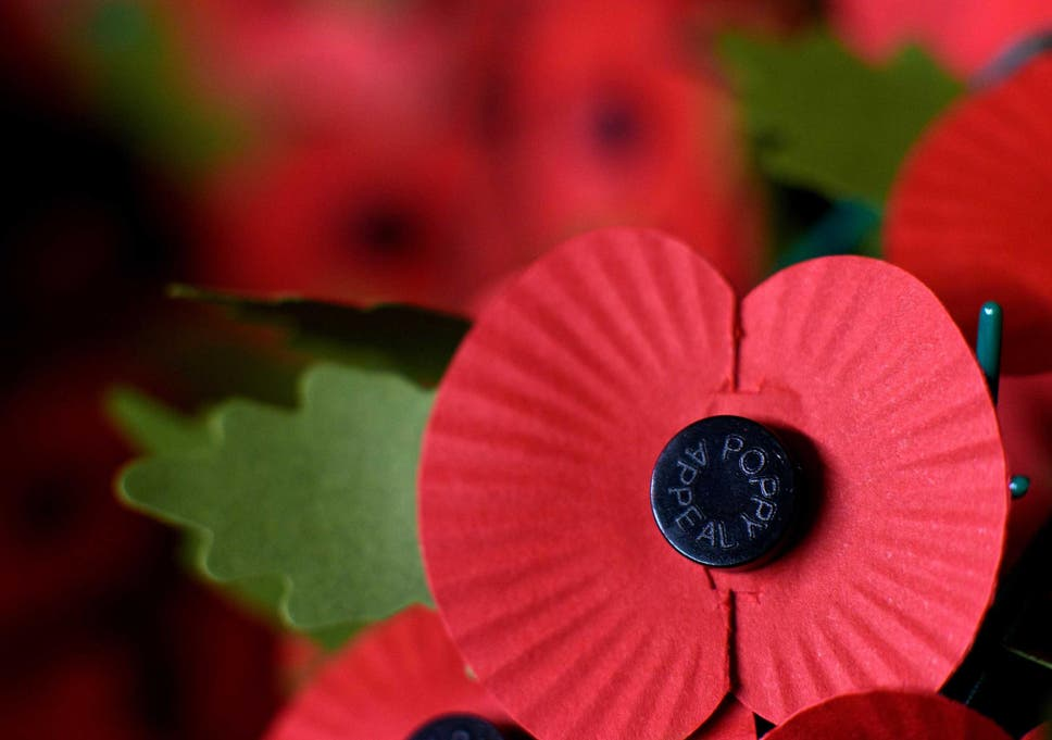 e091f0a808 The poppy is worn each year by millions of people as a symbol of remembrance