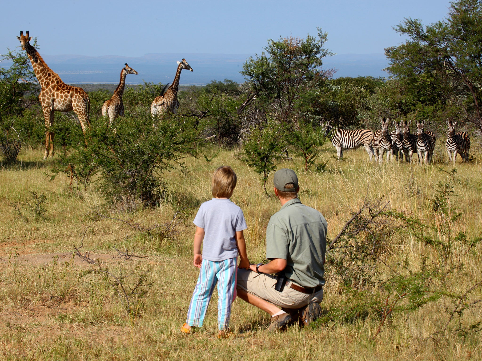 Family safaris: Animal adventures for all ages