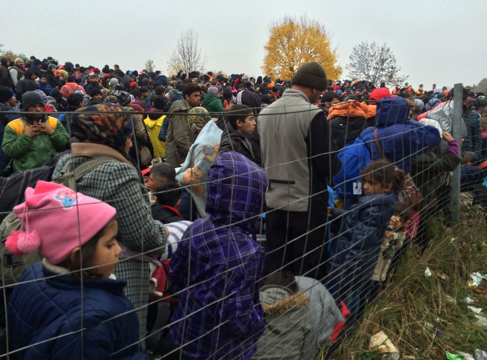 Refugees queuing at the border between Slovenia and Austria in Sentilj