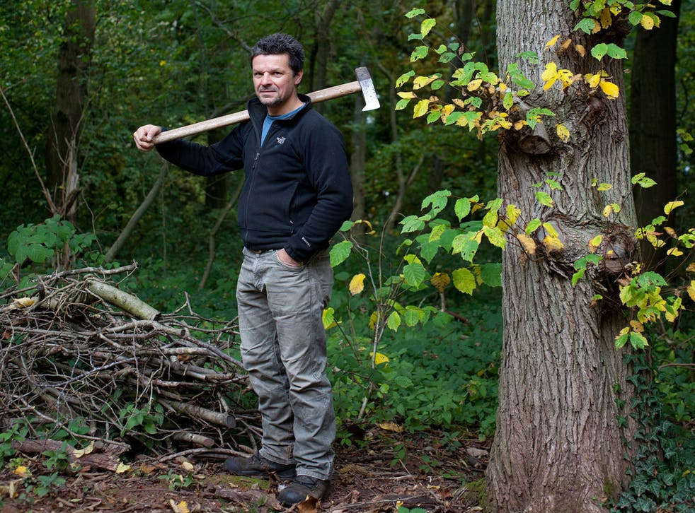 Rob started to coppice - the ancient woodland-management practice of cutting trees back to ground level to stimulate regrowth - and the cycle is now a cardinal component of his existence