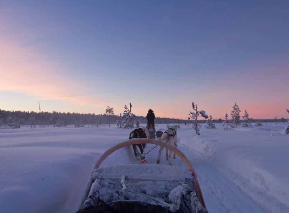Enjoying a festive husky ride