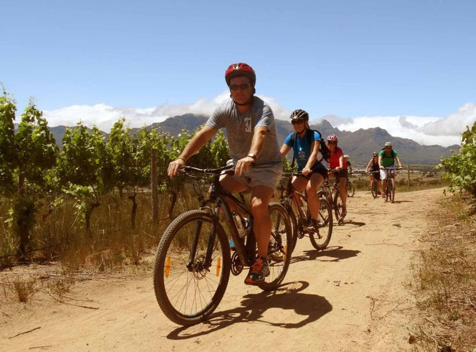 Pedal and press: Wine tours on two wheels in South Africa
