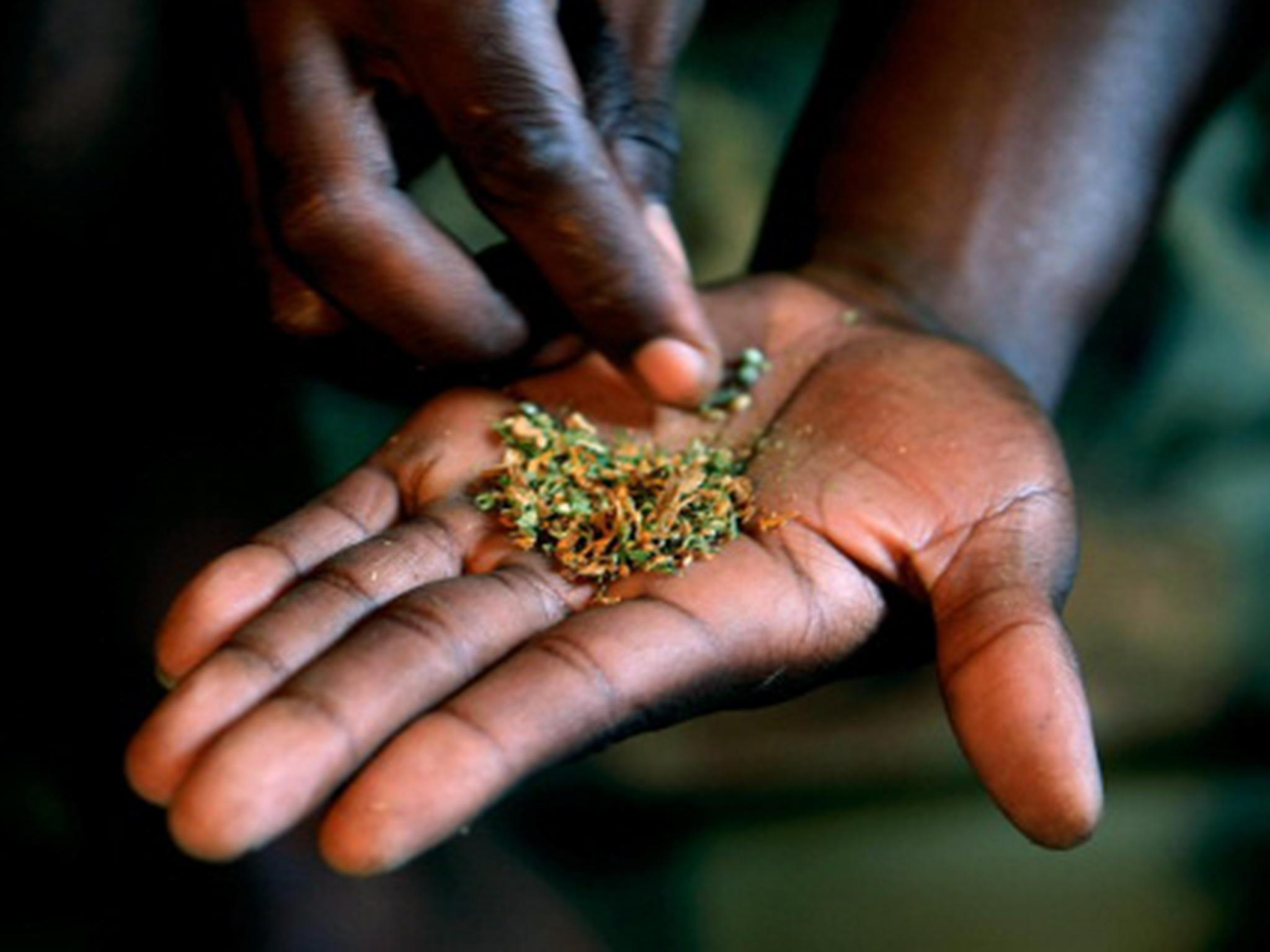 UN's 10-year plan to tackle world's drug problem has been