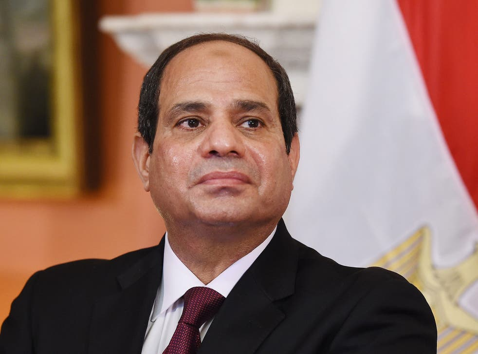 Egypt's President Abdel Fattah al-Sisi has come under fire in recent months