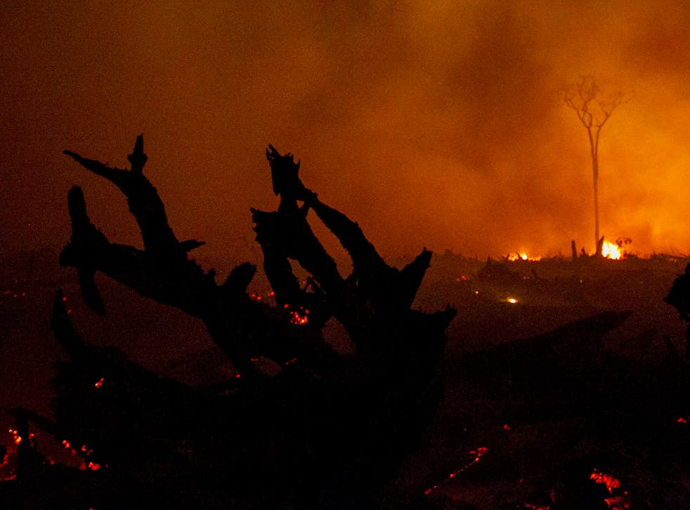 Burning peatland in the outskirts of Palangkaraya, Central Kalimantan, Indonesia, 1 November 2015