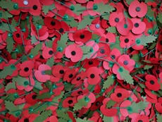 Armistice Day, Remembrance Day and Veterans Day - what's the