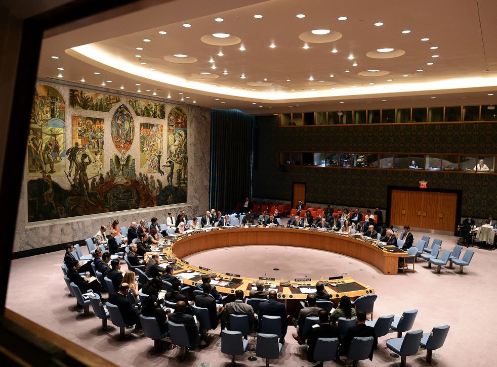 The UN Security Council is expected to pass the French resolution to fight the 'common enemy' as China and Russia are thought unlikely to use their vetoes