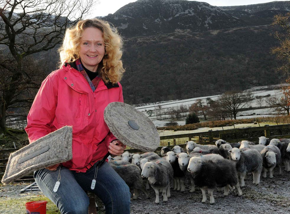 Sally Philips is the founder of Chimney Sheep