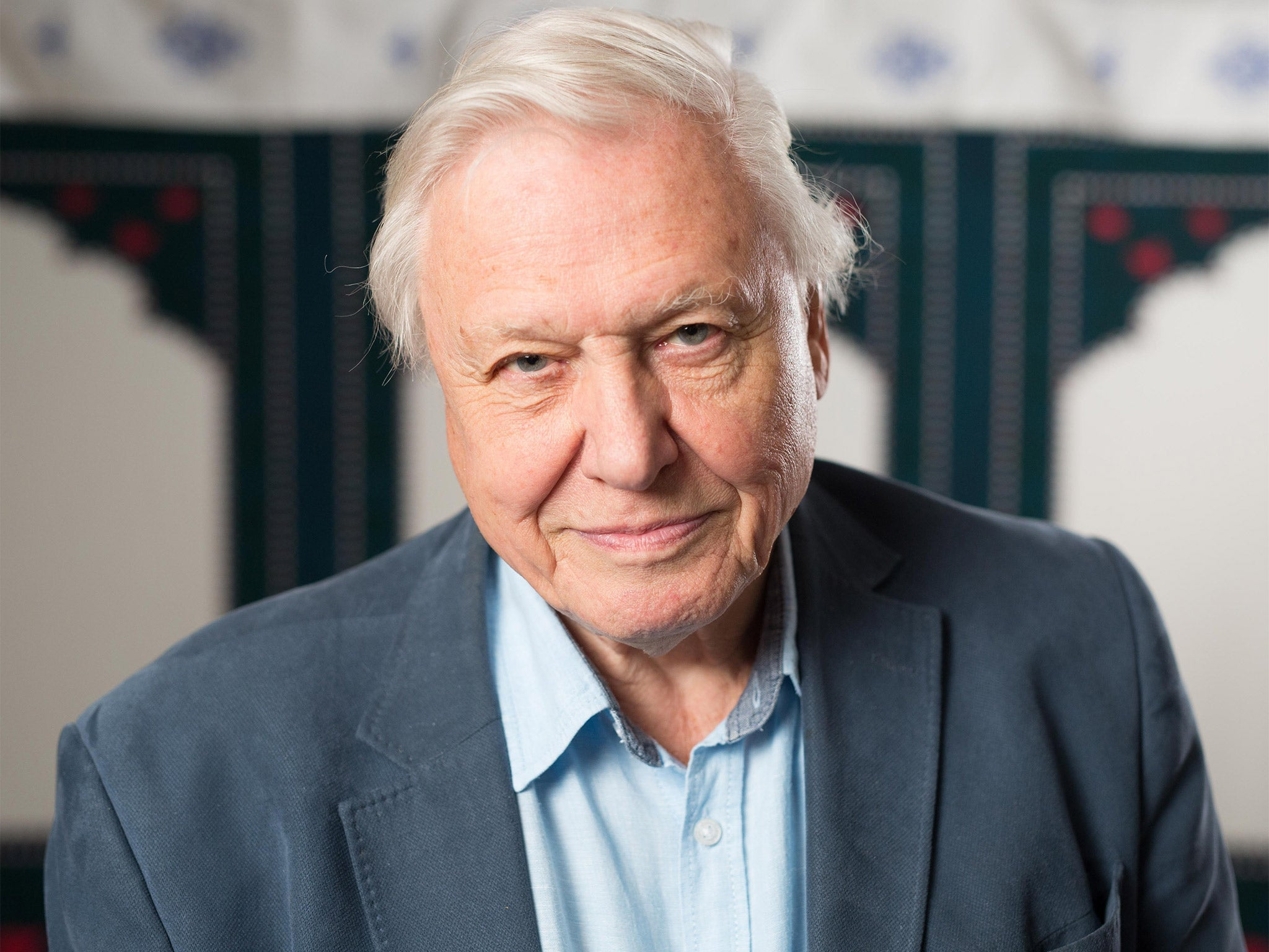Sir David Attenborough to mark 90th birthday with new BBC specials | The Independent