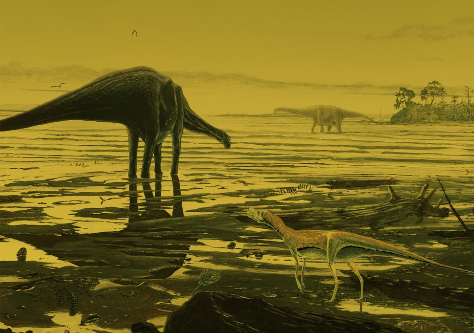 Scotland's largest dinosaur site discovered on Isle of Skye after